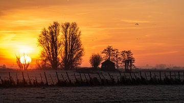 kalter Sonnenaufgang von Henk Roosing