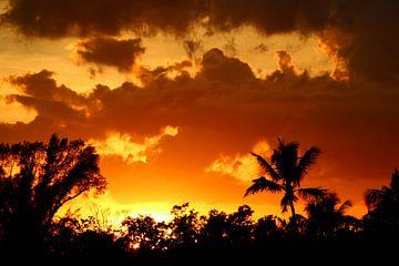 Een tropische zonsondergang - Een tropische zonsondergang van Christiane Schulze