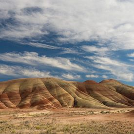 Felgekleurd gesteente in de zandsteenlagen van de  'Painted Hills' van Jonathan Vandevoorde