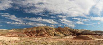 Farbige Gesteinsschichten in den 'Painted Hills' von Oregon von Jonathan Vandevoorde