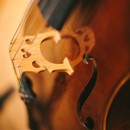 Cello van Colin van der Bel