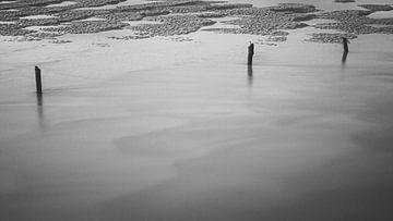 Drei Pole im Wasser von