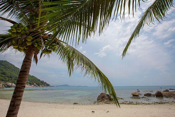 Coral Cove-strand uitzicht op het eiland van Koh Samui Thailand
