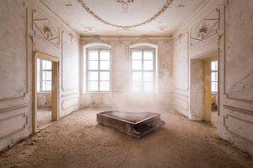 Piano dans la poussière. sur Roman Robroek