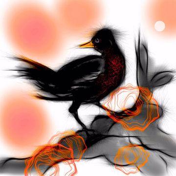 Vogel Zwart van Raina Versluis