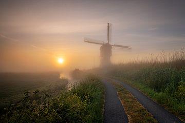 Weg zur Sonne von Jan Koppelaar