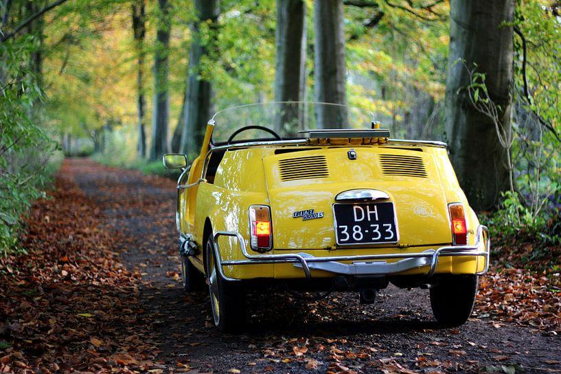 Fiat 500 cabrio jolly. Klassieker / oldtimer / yountimer van Maarten van Hemel