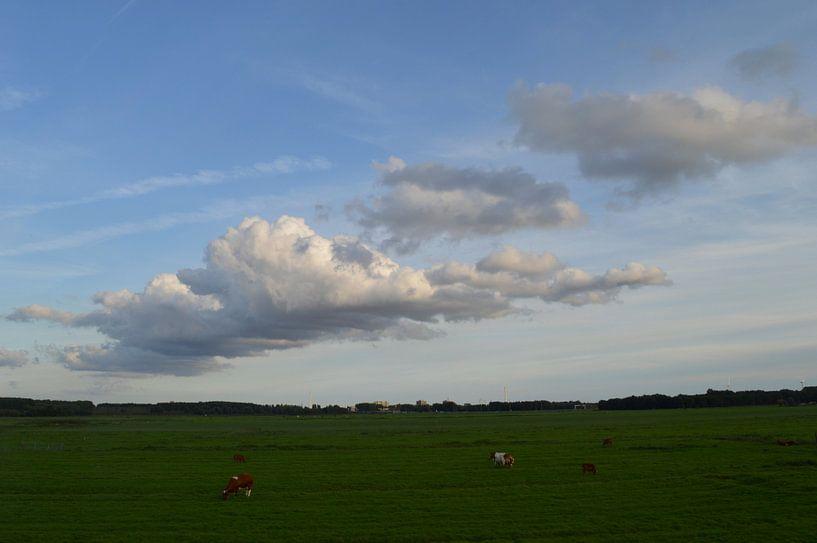 Hollandse Wolkenlucht van Mr and Mrs Quirynen