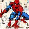 Spiderman von Michiel Folkers Miniaturansicht