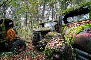 Nieuwsgierige Vrachtwagen Wrakken. van Roman Robroek