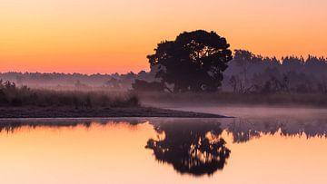 Strabrechtse Heide 247 von Deshamer
