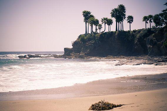 Laguna Beach van Sander van Leeuwen