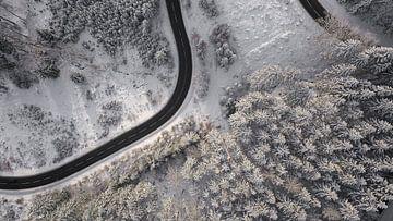 Image de drone d'un paysage forestier enneigé sur Adrian Meixner