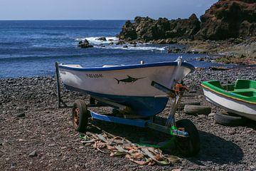 Fischerboot auf der Insel Lanzarote von Alice Berkien-van Mil
