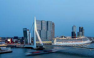 Rotterdam Erasmusbrug Cruiseship