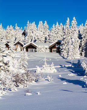 Winter in Noorwegen van Hamperium Photography