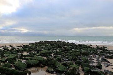 Blick über den Strand und das Meer. Zoutelande von Wendy Hilberath