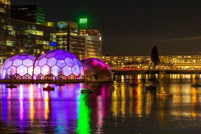 De prachtige bollen van Rotterdam van Petra Brouwer