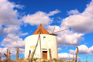 Molino de Vejer de la Frontera, Windmolen van Vejer de la Frontera van Anton Pronk