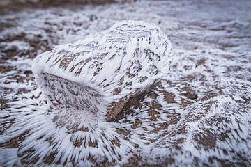 Steam patterns on volcanic rock van Andreas Jansen