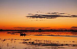 Abends am Chobe Fluss, Botswana