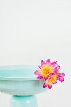 Türkisfarbene Schale mit Blumen von What I C