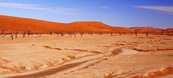 Deadvlei Namibia van W. Woyke