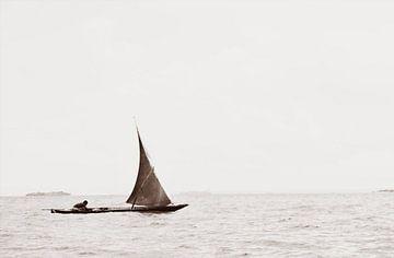 Afrikaanse visser van Bart van Mastrigt