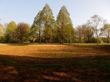 park in de herfst  van Joke te Grotenhuis
