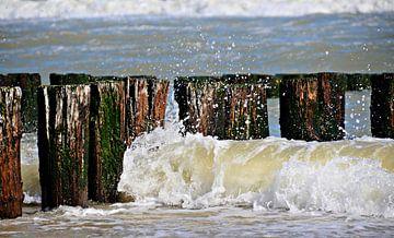 Wellen, Strandstangen und Muscheln Strand Domburg von Jessica Berendsen