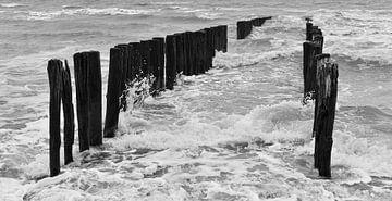 Sturm an der Küste Soutelande von Marjolein van Middelkoop