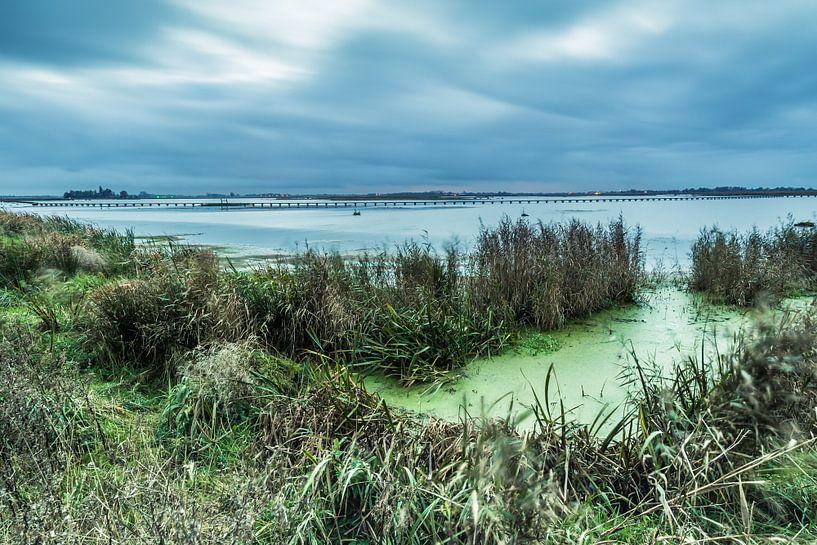 Het Dannemeer is een natuurgebied in Groningen van Arline Photography