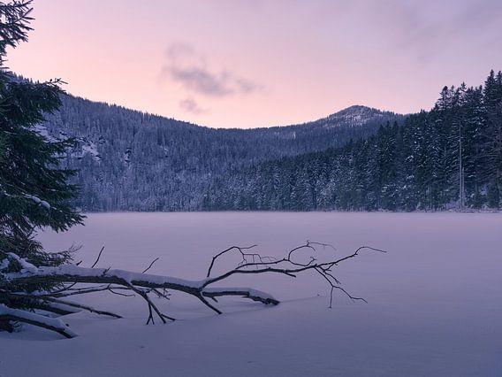 Sonnenuntergang am gefrorenen Arbersee 1