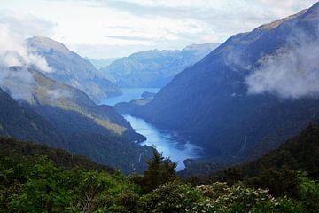 Doubtful Sound in Nieuw Zeeland van Pamela Fritschij