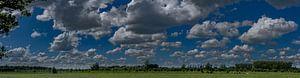 Nederlandse weilanden met wolken panorama van Tessa Louwerens