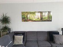Photo de nos clients: Forêt idyllique au lever du soleil sur Günter Albers, sur toile