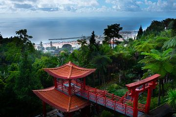 Ein Blick auf das Meer vom Botanischen Garten in Funchal von jonathan Le Blanc
