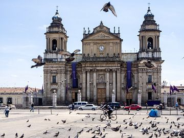 Kathedraal van Guatemala Stad met duiven en fietser op de voorgrond van Michiel Dros