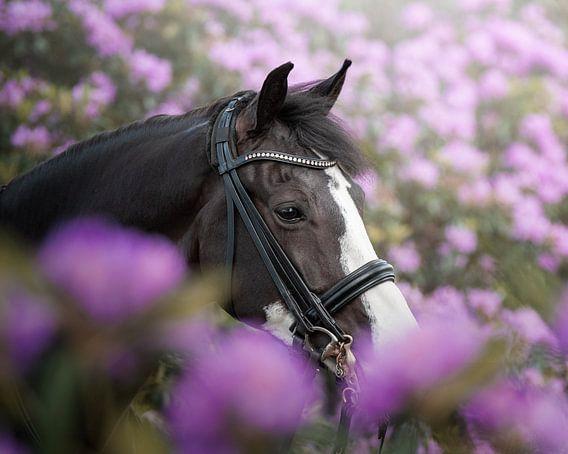 Paardenportret in bloemen