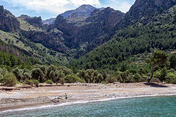 Küste an der Bucht Cala Tuent auf der Baleareninsel Mallorca von Reiner Conrad