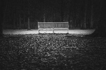 """""""Emptiness"""" eine verlassene Bank in einem Wald von Retinas Fotografie"""