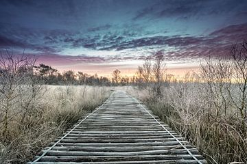 Winterochtend van Jeroen Mikkers