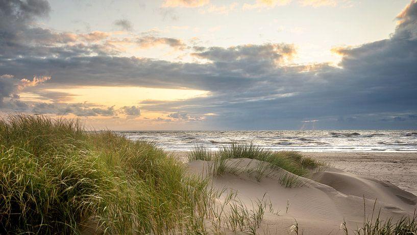 Duinen van Petten aan Zee (Noordzee) van Martijn van Dellen