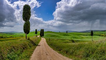 Toscane - Val d'Orcia - Gladiator Road van Teun Ruijters