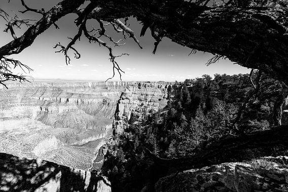 Angels Window in de Grand Canyon