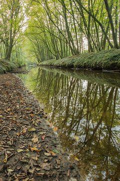 Beek de Boven-Slinge in Winterswijk van Tonko Oosterink