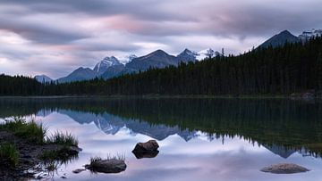 Herbert Lake, Icefield Parkway, Banff National Park, Alberta, Canada. van Alexander Ludwig