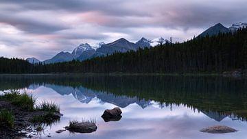 Herbert Lake, Icefield Parkway, Banff National Park, Alberta, Canada von Alexander Ludwig