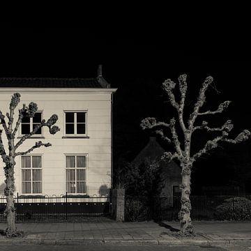 Nachtlandschap met Leilinde van Raoul Suermondt