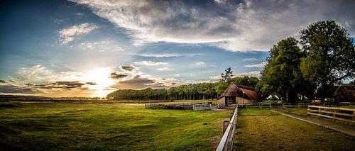 Sheepfold Sunset (Ginkelse Heide) von Joram Janssen